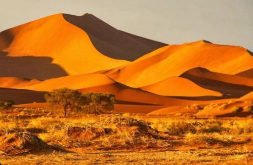 Пустыня намиб интересные факты. Намиб — самая древняя пустыня планеты