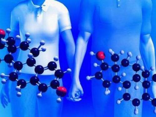 Химия в нашей жизни пища. Химия и организм человека