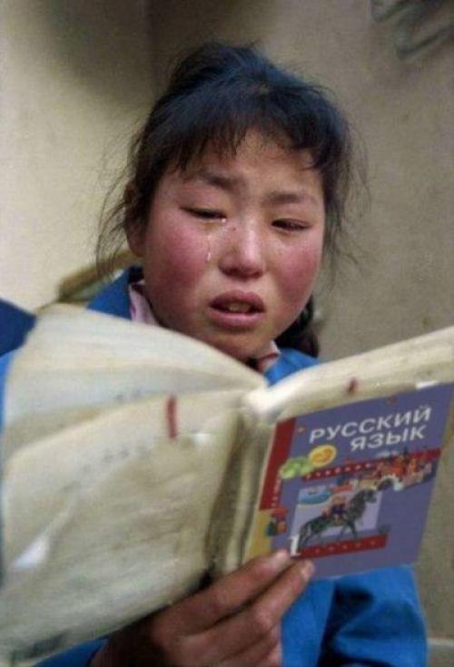 Почему русский язык сложный для иностранцев. Русский язык — взрыв мозга для иностранцев
