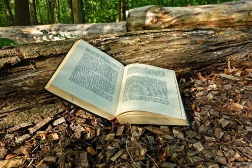 20 лучших книг всех времен. ТОП 20 Лучших Книг Всех Времен для Вашей Коллекции