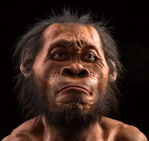 Как выживали древние люди. Как лечились первобытные люди в каменном веке