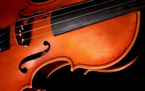 Факты о скрипке. ПЯТЬ ИНТЕРЕСНЫХ ФАКТОВ О СКРИПКЕ