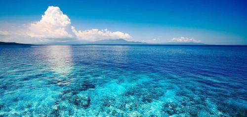 Интересные факты о океанах. 20 любопытных фактов о Мировом океане