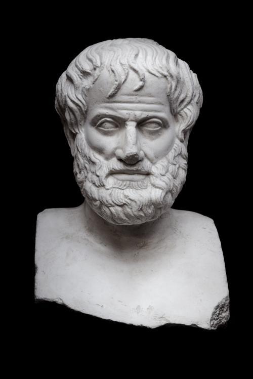 Аристотель годы жизни. Незнакомый Аристотель: чего вы не знали о жизни и смерти великого ученого?