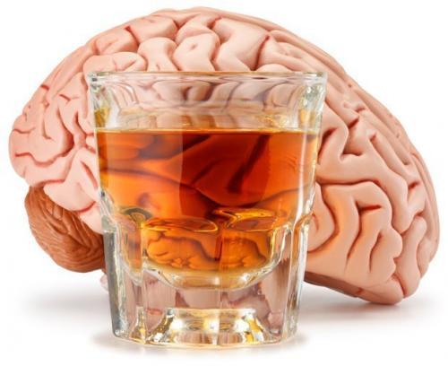 Сколько нервных клеток убивает алкоголь. Как алкоголь убивает клетки мозга