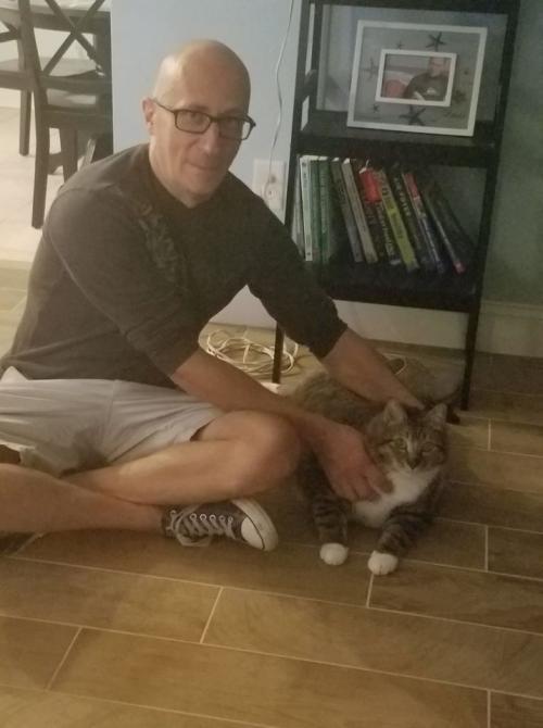Толстый кот из приюта. Кота-пончика сдали в приют. Но пухляш так покорил сердца людей, что вмиг обзавёлся семьёй и личным врачом