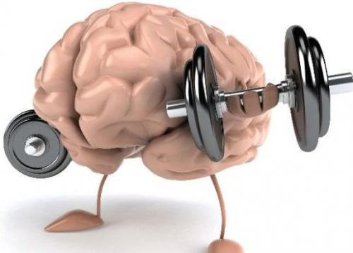 Тренировка памяти. 8 упражнений для повседневной тренировки памяти и внимания