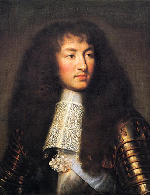 Людовик 14 король франции интересные факты. Самое интересное про французских королей