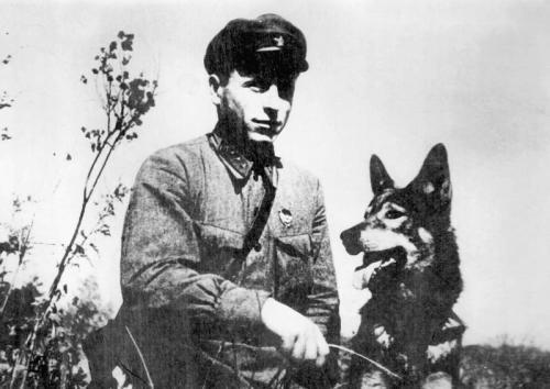 Кого ловил Карацупа. Пограничник с собакой — Никита Карацупа и его Индус