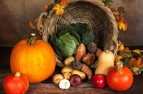 Как правильно хранить овощи зимой. Хозяйство вести – не грушу трясти. Как сохранить овощи в квартире зимой