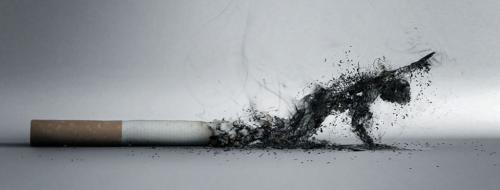 Курение убивает. Смерть от курения — опасная привычка