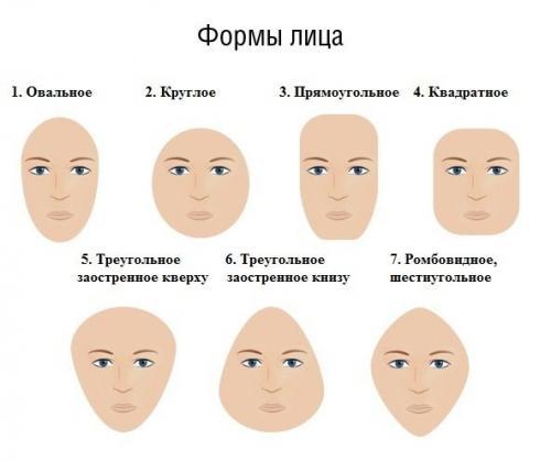 характеристика черт лица картинки жители никак могли