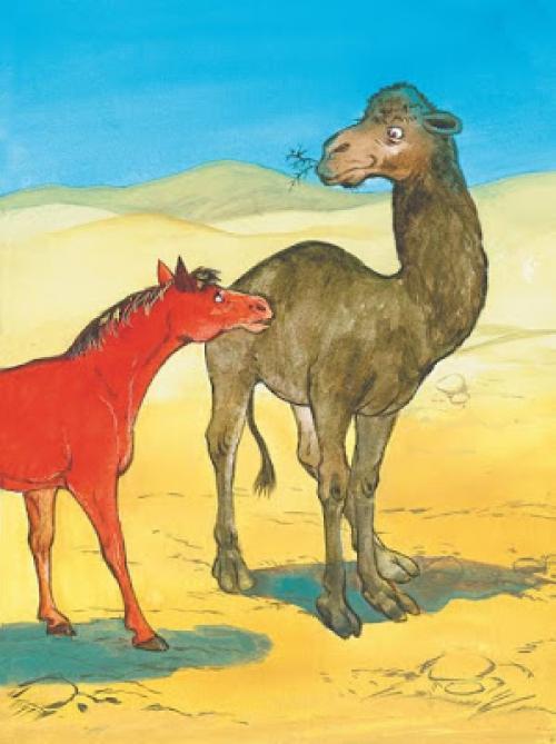 контраста от чего у верблюда горб картинки раскраски строительство