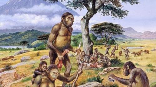 Череп древнего человека и современного. Внешность первобытного человека