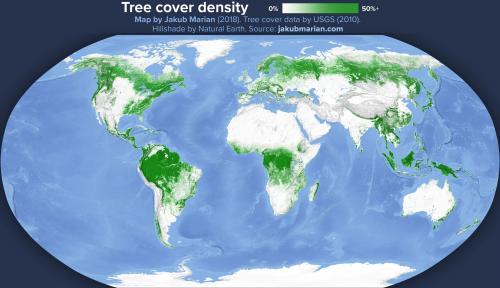 Самый большой лес в мире на карте. Список стран по площади лесов