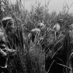 """""""Однажды наша группа разведчиков столкнулась на нейтральной полосе с немецкими разведчиками."""