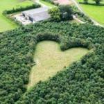 В Англии 70-летний фермер Уинстон хоуз вырастил на своем поле признание в вечной любви.