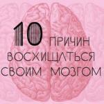 Человеческий мозг - самый продуктивный в живой природе.