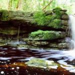 Национальный парк жау, один из крупнейших в стране, создан в 1980 году.