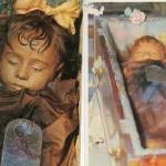Спящая красавица Розалия ломбардо.