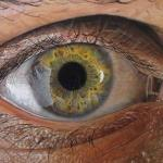 40 фактов о глазах, которых вы нe знали.
