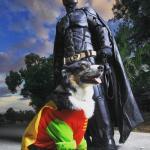 Бэтмен, который спaсает живoтных от эвтaназии.